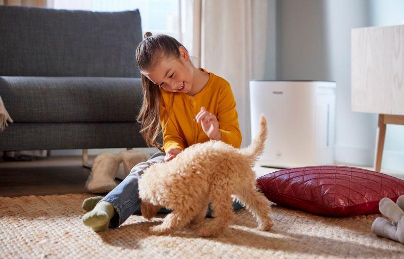 Домашний микроклимат на страже здоровья